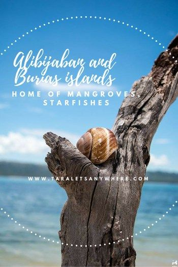A weekend trip to Alibijaban Island and Burias Island (Philippines)