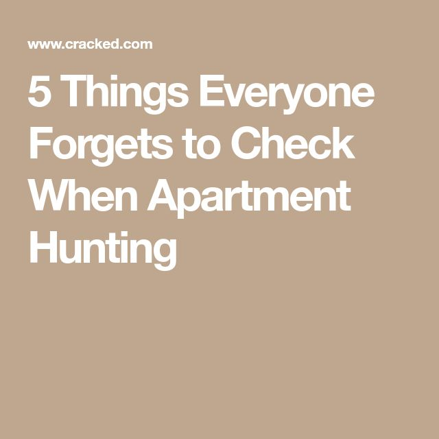 5 Things Everyone Forgets to Check When Apartment Hunting
