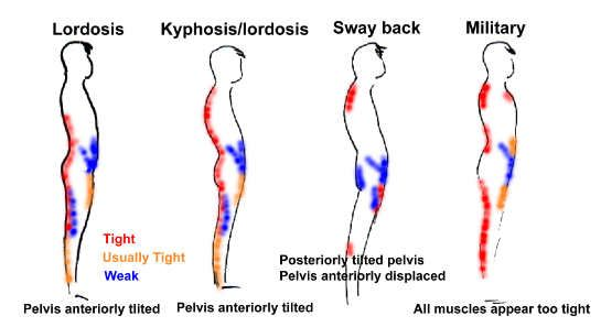 hip flexor stretches for cyclists