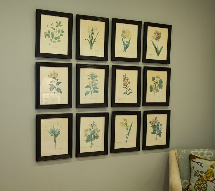 A collection of flower prints