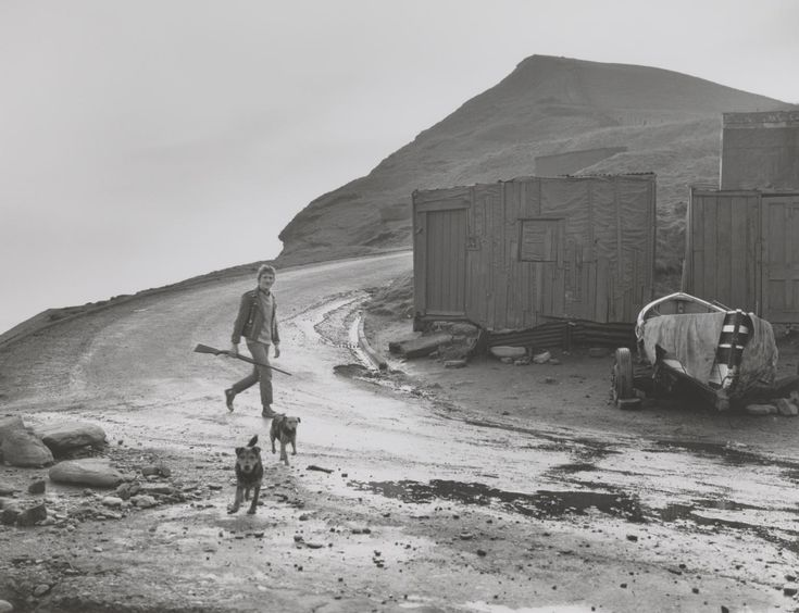 Chris Killip 'Leso with his dogs and a gun, Skinningrove', 1983, printed 2012–13 © Chris Killip