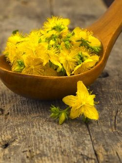 St. John's Worthas long been used for healing wounds but today it's more known for its use as a remedy for mild to moderate depression #alternativemedicine