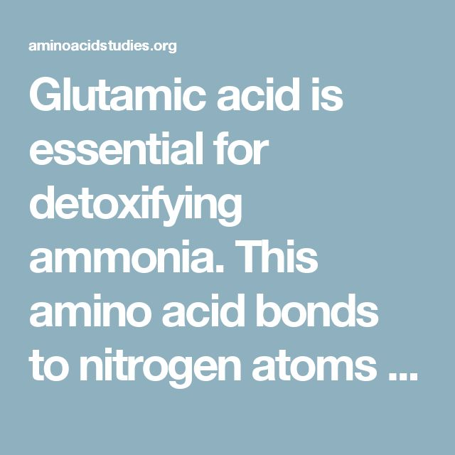 Glutamic acid is essential for detoxifying ammonia. This amino acid bonds to nitrogen atoms and in turn, creates glutamine. This conversion  is the only way to remove this toxic metabolic waste product. Glutamic acid is also required for the synthesis of glutathione, one of the most effective and abundant antioxidants in the body. Glutathione  neutralises  free radicals.