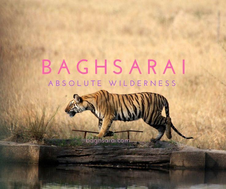 Bagh Sarai Resorts, Bandhavgarh National Park, Madhya Pradesh, India