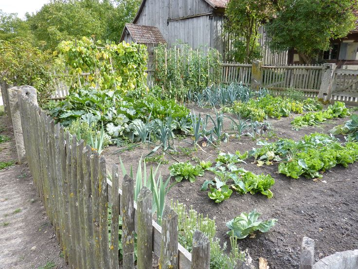 26 best Vegetable Garden Design Ideas images on Pinterest Garden