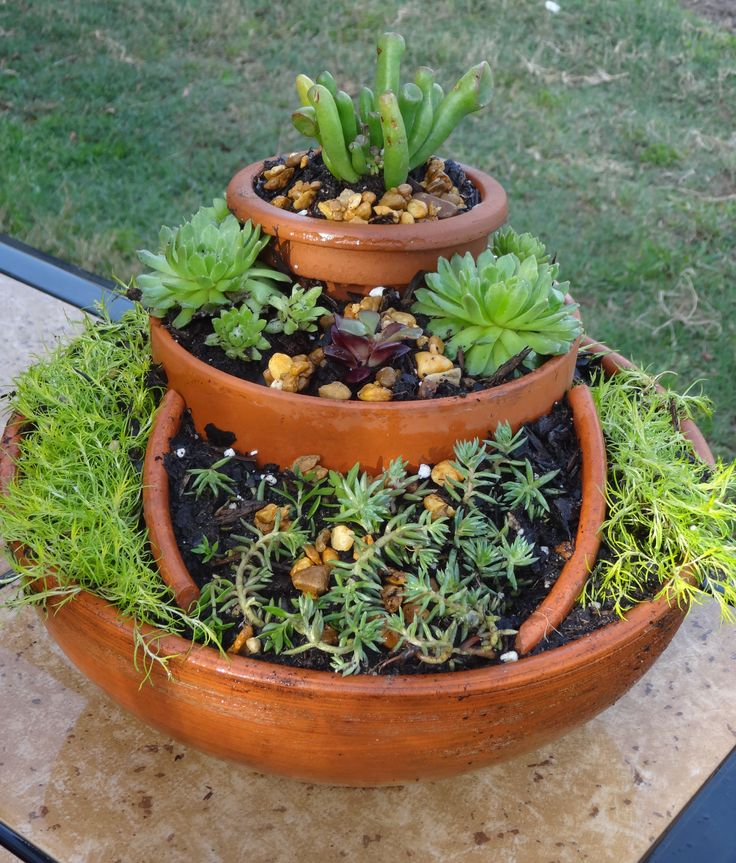 Garden made out of broken pots..I used succulents, moss, & potting soil