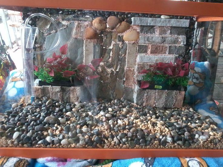 peceras con fondos naturales de piedras