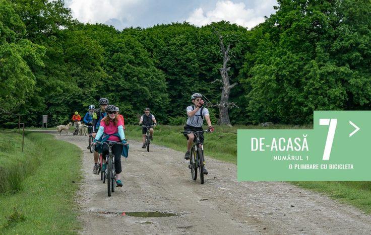 7 de-acasă (3) - Pe bicicletă prin Transilvania | Ecoturism si calatorii responsabile7 de-acasă (3) – Pe bicicletă prin Transilvania – Ecoturism si calatorii responsabile