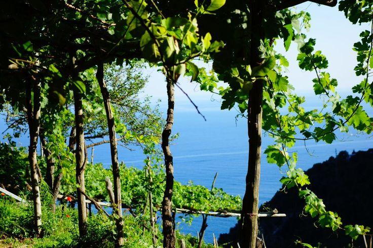 Furore. Amalfi Coast. Italia.