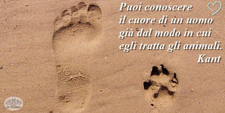 www.interris.it #notizie #informazione #news