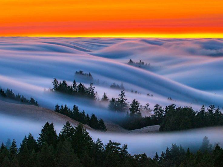 As oníricas ondas de nevoeiro registradas pelo fotógrafo Nick Steinberg 06