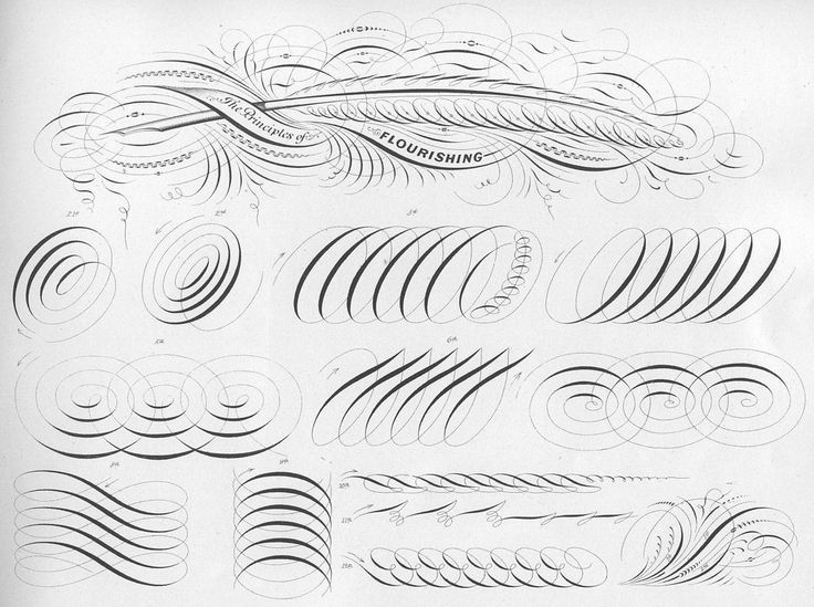 Images about calligraphy exercise copperplate and