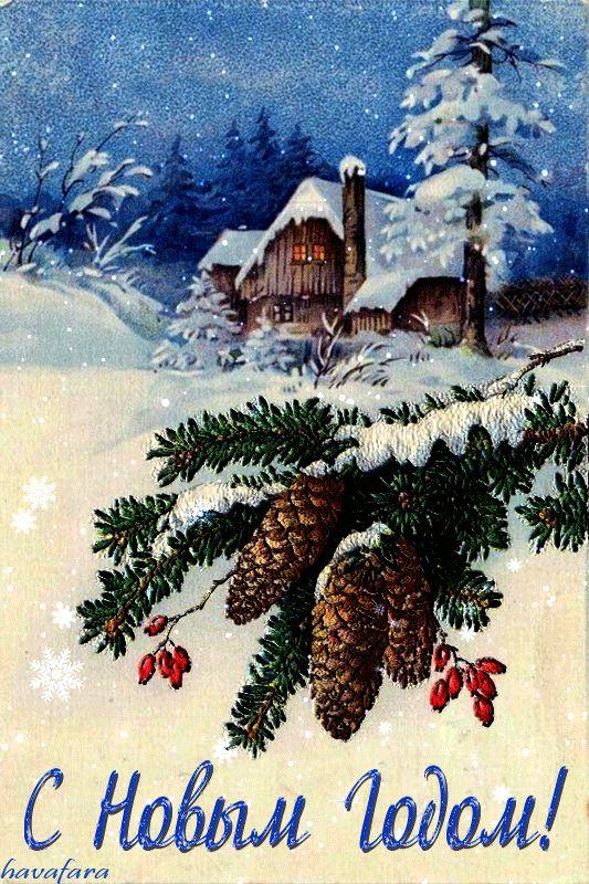 Смешные картинки, новогодние открытки с ветками ели