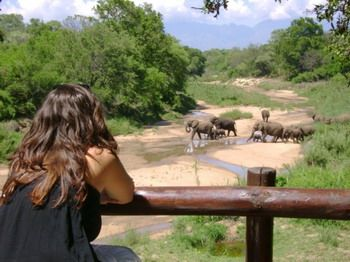 Walking safaris at Kuname are a chance to step into a world few get the opportunity to experience.