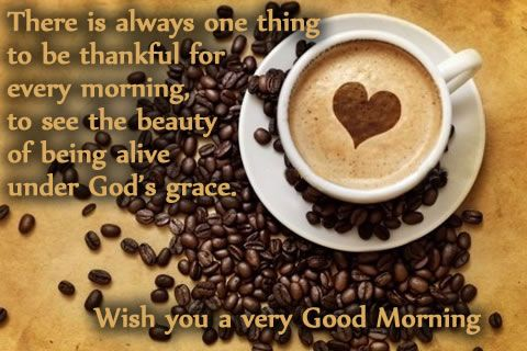 Good Morning Quotes - There is always one thing to be thankful for every morning, to see the beauty of being alive under God's grace. Wish you a very Good Morning.