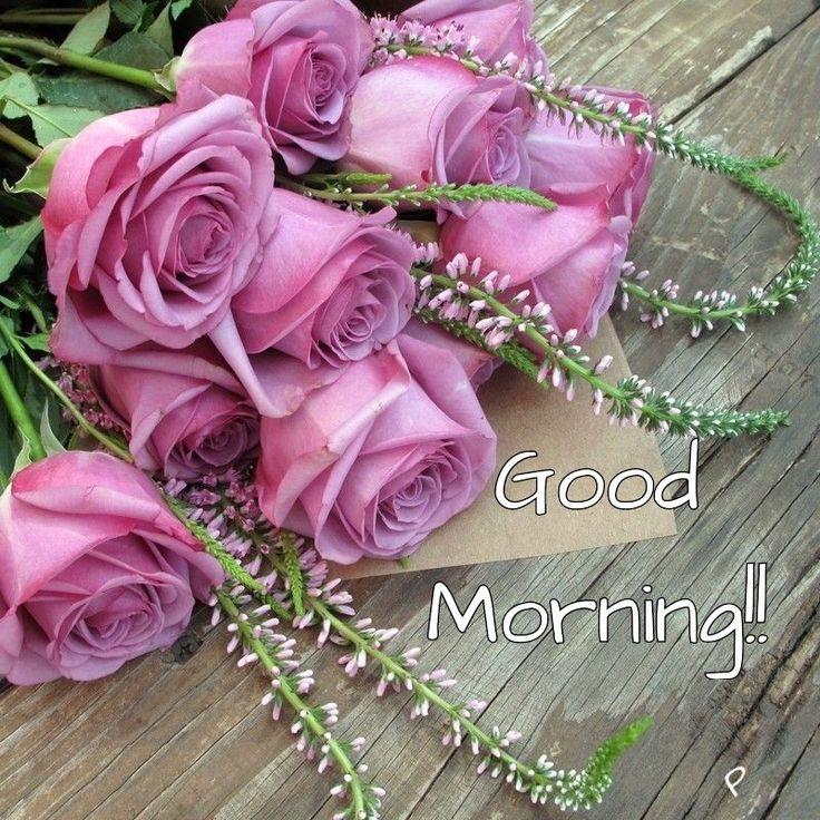 2408 best Good morning images on Pinterest | Buen dia, Good morning ...