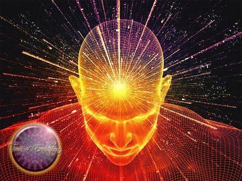Der Beweis – Wie deine Gedanken die Umwelt verändern – Ein sensationelles…