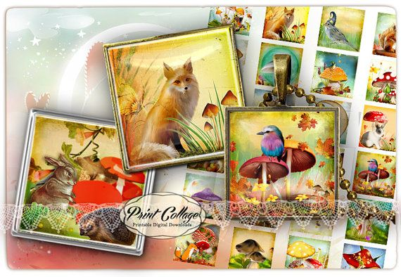 Magic Forest Animal images Square Digital Collage Sheet