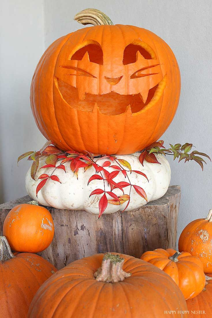10 Essential Pumpkin Carving Tips And Tricks Happy Happy Nester