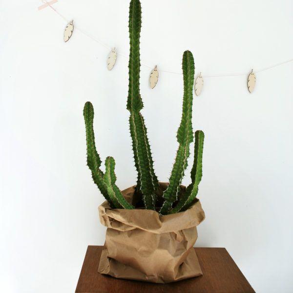 les 25 meilleures id es de la cat gorie sac en papier kraft sur pinterest diy sac papier kraft. Black Bedroom Furniture Sets. Home Design Ideas