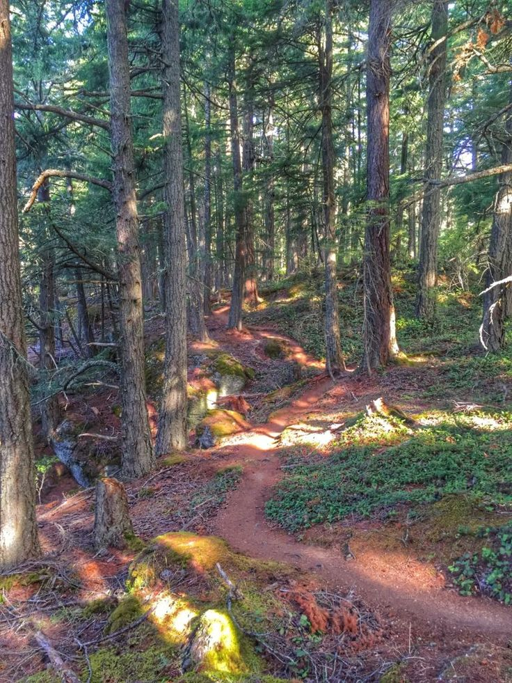 3 days on Salt Spring Island: what to see, eat and do (day 3)