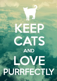 Keep cats and love purrfectly