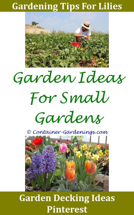Vegetable Garden Walkway IdeasGargen Wall Hanging IdeasGarden Edging And Borders Ideas