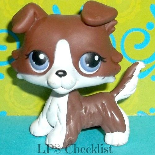 Littlest Pet Shop No Puzzle Chocolate White Collie Puppy Dog RARE LPS.  Click here: mylittlestpetshops.com for more pets! 1st choice