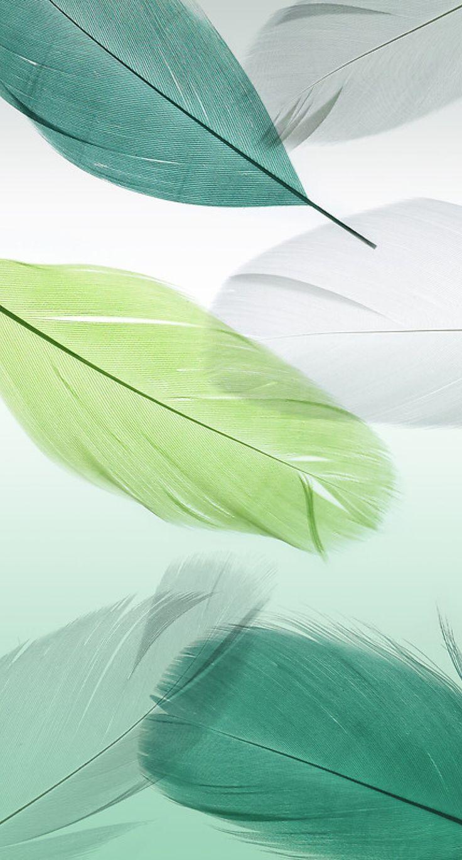 #Cool #Wallpaper #Feather ::… Zum Herunterladen des coolen Hintergrundbilds hier klicken Cooles Hintergrundbild herunterladen: #Cool #Wallpaper