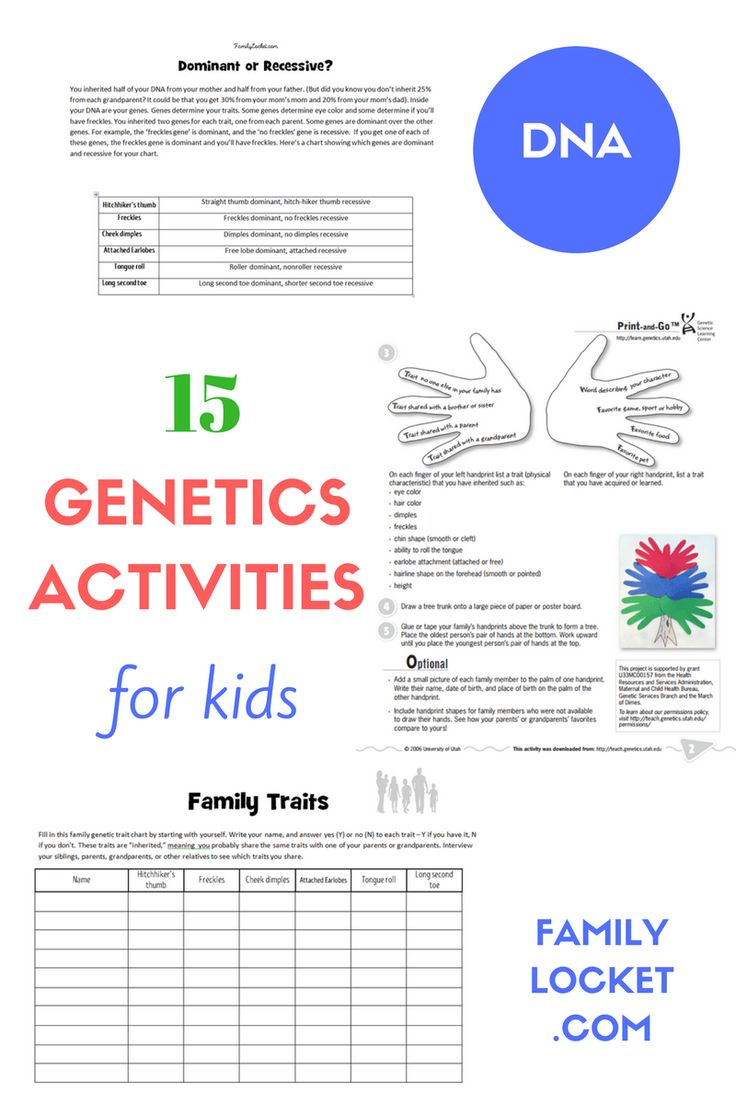 Here are 15 activities to teach kids about DNA, genetics, and heredity.  Each of these ideas are free and have worksheets, printables, ...