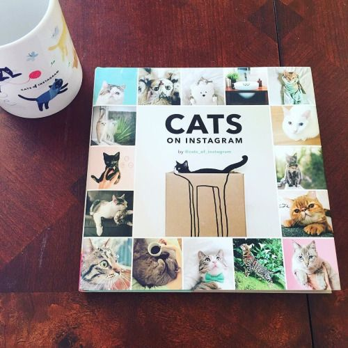 Scare your dog friends this #Halloween by gifting them our very first ever book. 400 original cat photos from 5 years. Now available at @urbanoutfitters @nordstrom @overstock ($10 USD!) @sfmoma @powellsbooks & many other online & local stores! ORDER: bit.ly/coibook (Amazon) [source: http://ift.tt/2ebeKcK ]