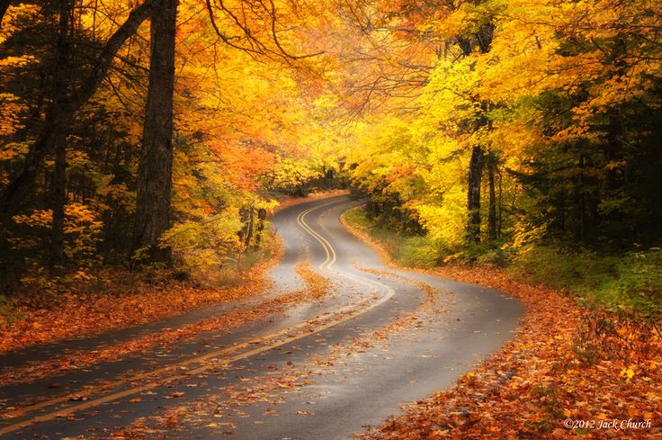 Beautiful autumn colors spread along a forest road near Lake Superior in the Upper Penninsula of Michigan