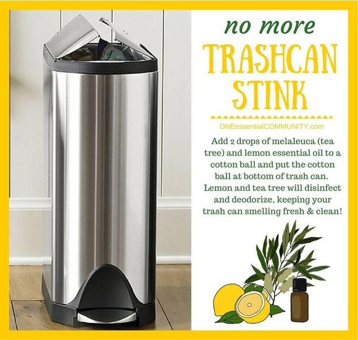 essential oil tip & hack- No more trash can stink! Add 2 drops of melaleuca (tea tree) and lemon essential oil to a cotton ball and put the cotton ball at the bottom of a trash can. Lemon and tea tree will disinfect and deodorize, keeping your trash can smelling fresh and clean!