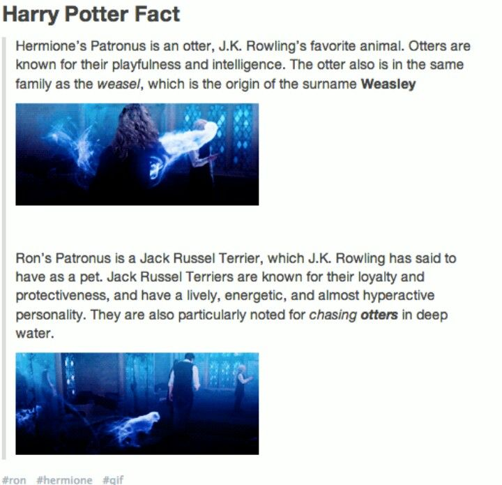 Hermione's and Ron's Patronus Origins i love how everything she included in the stories had very deep meanings that aren't noticed the first 8 times you read them.