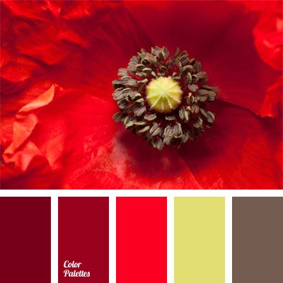 A range of bright and intense hues of red poppies complemented with light brown and pale yellow-green. Blankets, pillows and ottomans in intense red shades will turn a classic pastel interior room into bright and festive, while posters or panoramic photographs depicting red flowers will make decoration complete.