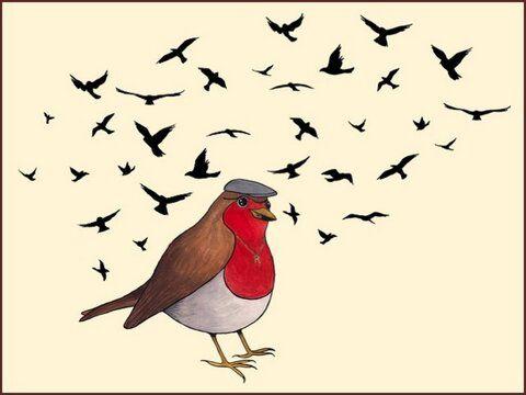 https://twitter.com/Robinandbirds http://kck.st/1ksrGrS