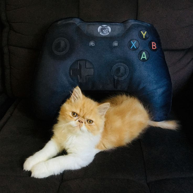 Gamer Cushion Control Xbox One Video Game Black