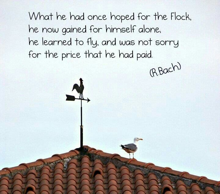 Essay about jonathan livingston seagull author