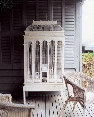 ooooo....love this birdcage.