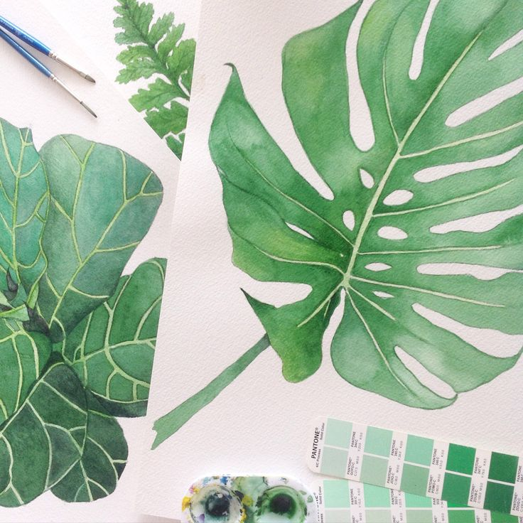 Sprout Gallery Botanical art Palm fronds, fiddle leaf