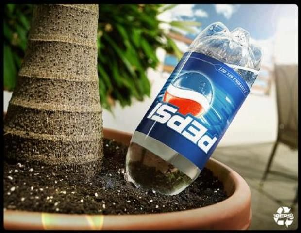 Un regador automático. Genial idea para cuando uno se va de vacaciones. Solo tenes que enterrar una botella con agua en la maceta.