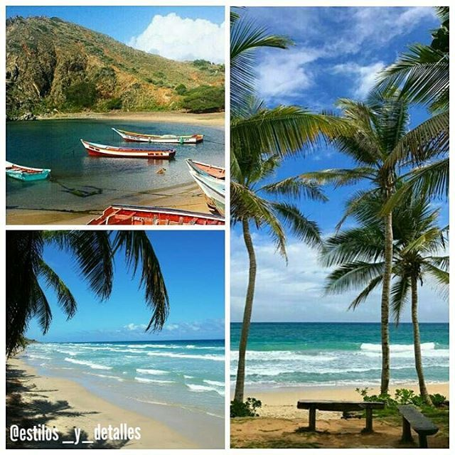 Deseas tu despedida de solter@, tu Boda y Luna de Miel en la Isla de Margarita te ofrecemos las mejores propuestas en los MEJORES HOTELES a PRECIOS INCREIBLES!!!... contactanos y te daremos toda la información.  @cidwep @hotelbellavista @puertadelsolpmv @casafranciamgta @tibisayhotelboutique @hotelhesperia @hotelkokobay  #famtrips #wedding #Margarita #beach #playa #destinationwedding #weddingplanner #eventplanner #love #design #luxury #vip #etiqueta #producción #venezuela #CIDWEP…