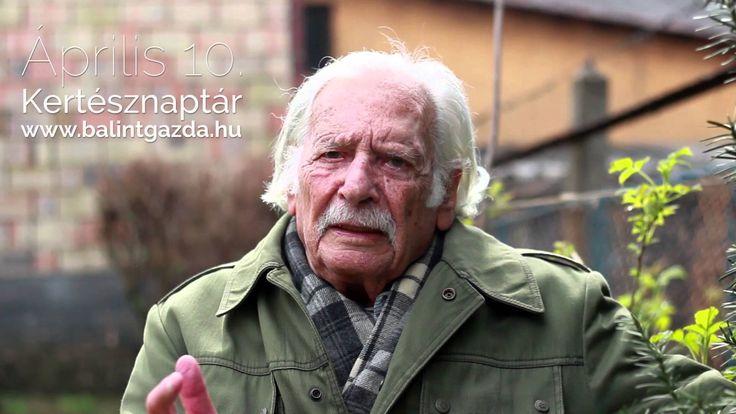 Április 10. - Kertésznaptár - Bálint gazda tanácsai
