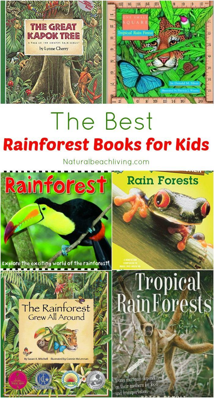 The Best Rainforest Children Books Natural Beach Living