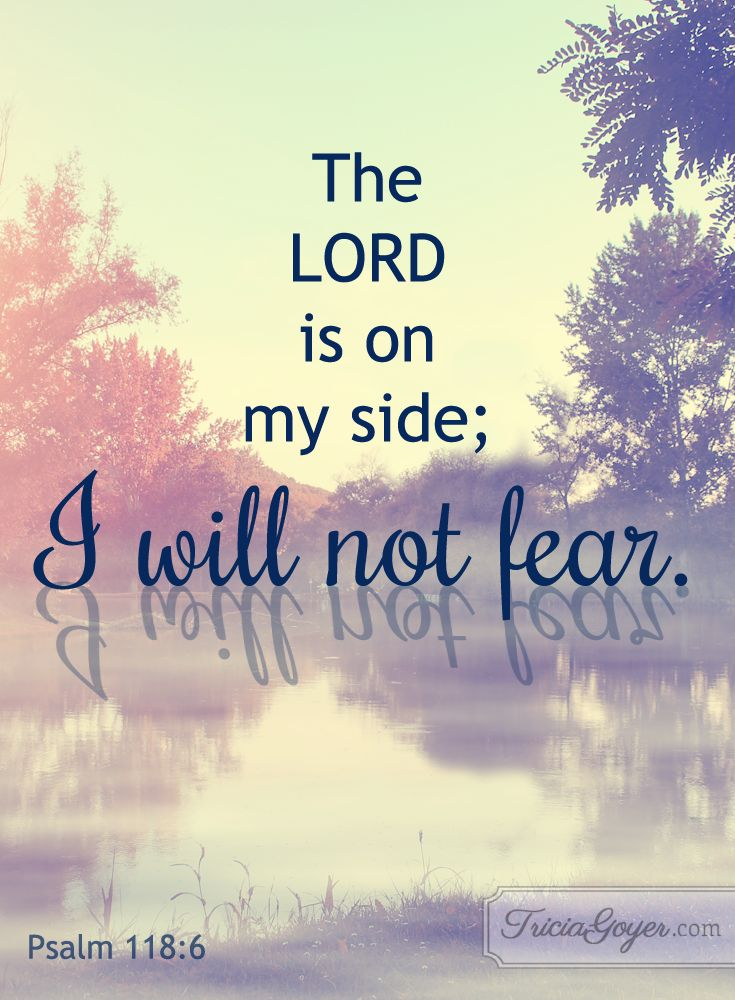 I will no fear! Psalm 118
