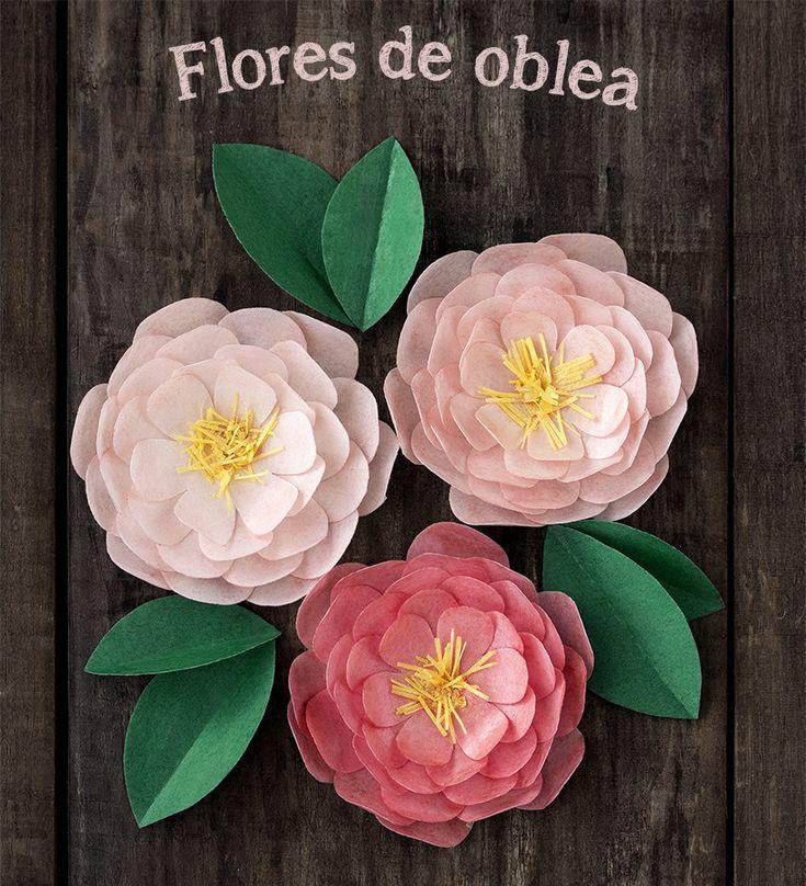Postreadicción galletas decoradas, cupcakes y cakepops: Tutorial de flores con oblea