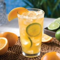 Tropical and delicious, the parrot passion
