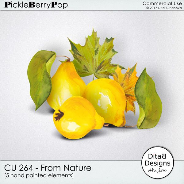 DitaB Designs:     NEW  CU 261 - 264 From Nature  30% OFF for a l...