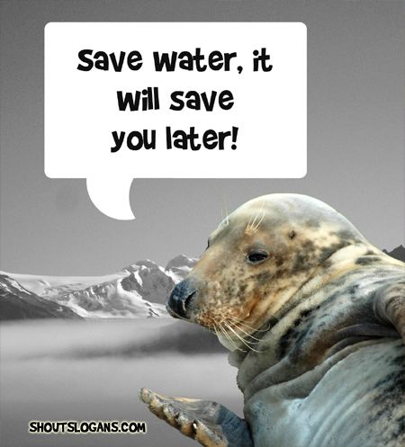 Save Water, it will save you.