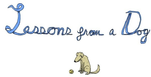 Adorable Illustrations Of Lessons From A Dog